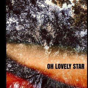 Lovely Star Wall Art - Lovely Star * Original Photography Art Print